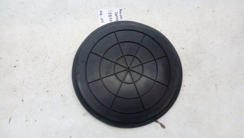 Заглушка (решетка) в бампер   298201063