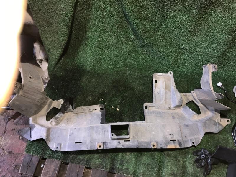 Пыльник переднего бампера Honda Crv 2006 [74111SWAA00] RE4 K24A
